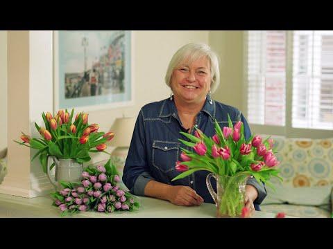 Tulip Care Tips Youtube