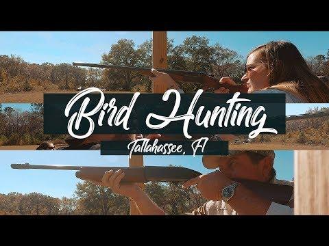 Bird Hunting In Tallahassee, FL - Skeet Shooting Clay Shooting