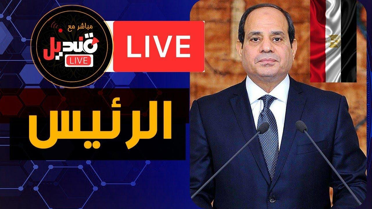 مصر اليوم في عيد