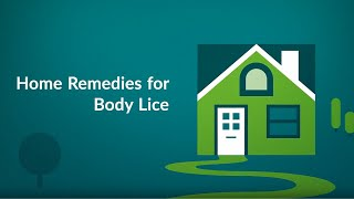 Home Remedies for Body Lice (How to Get Rid of Lice)