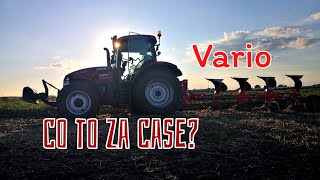 #217 Orka pod rzepak - Case maxxum 125 & Agromasz Vario