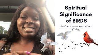 Spiritual Significance of Birds