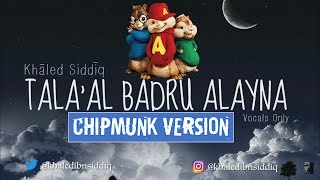 Khāled Siddīq - The Moon | Vocals Only (Chipmunk Version)