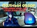 SteelSereis Rival 300 (CS:GO [Fade]) Полный обзор
