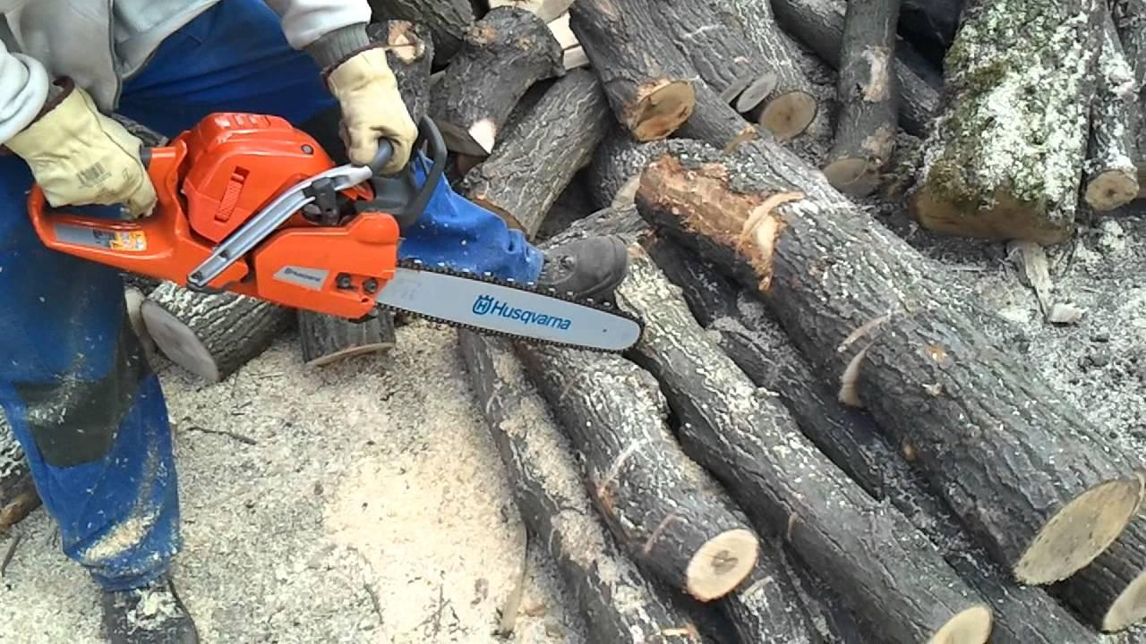 Husqvarna 555 cutting firewood [oak]