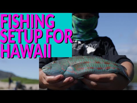 POPULAR Fishing SETUP For Hawaii SHORELINE Fishing - Whipping The SHORELINE With IKA Or LURES