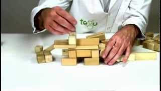 Preschool Learning Activities From Tegu - Building An Iguana