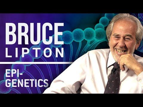 BRUCE LIPTON  - BIOLOGY OF BELIEF | London Real