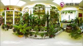 Флора стиль, Салон цветов(Описание и 3D-экскурсию можно посмотреть по адресу: http://orenburg.navse360.ru/magaziny/flora-stil-salon-cvetov-i-podarkov., 2015-03-21T12:02:09.000Z)
