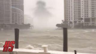 Скачать Giant Monster Spotted In Miami HURRICANE IRMA 9 10 2017