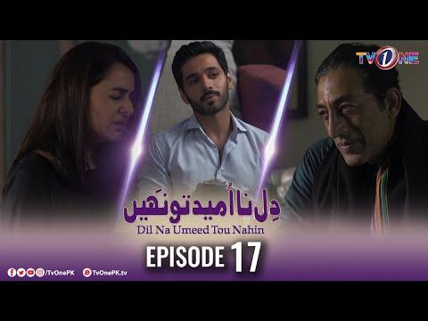 Download Dil Na Umeed Toh Nahi   Episode 17   Tv One Dramas