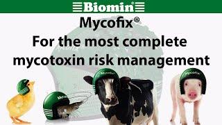 Mycofix® - For the most complete mycotoxin risk management