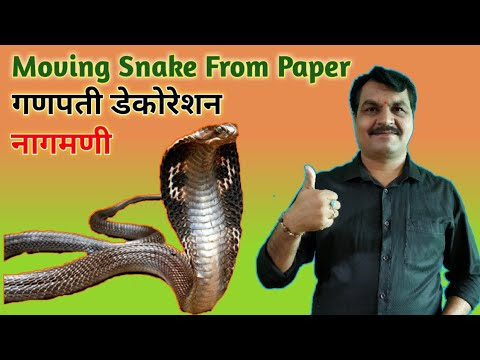 How To Make Snake From Paper | DIY Snake | Moving Snake | DIY School Project