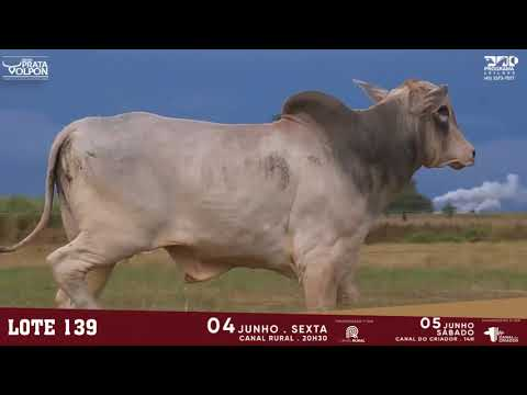 LOTE 139