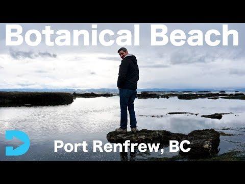 Port Renfrew, BC. - The Incredible Botanical Beach!
