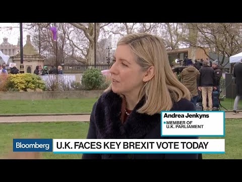 New Brexit Terms Don't Remove Backstop Risk, Tory Party's Jenkyns Says