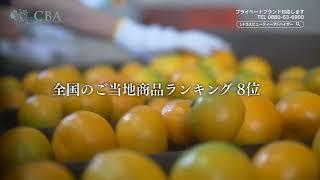 シトラスビューティー コールドプレスジュース PV thumbnail