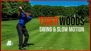 Tiger Woods Swing Compilation From Northern Trust 2020 (Slow Motion)