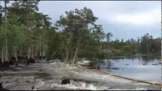 28 ACRE BAYOU CORNE, LOUISIANA SINKHOLE SWALLOWS 40 FT TREES WITHIN SECONDS WEDNESDAY (AUG 22, 2013)