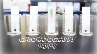 AP Chemistry Investigation #5: Chromatography Paper.