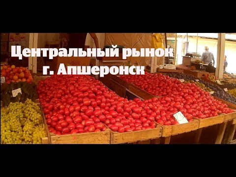 Апшеронск. Центральный рынок, обзор цен на продукты на 30 августа 2018