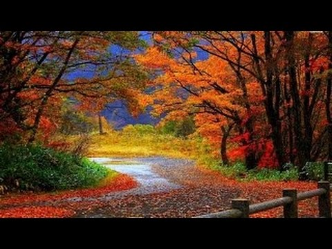 2 HOUR LONG Piano Music for Studying, Concentrating, and Focusing Playlist,매장음악, 공부, 힐링 피아