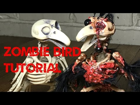 Zombird - How to corpse a bird skeleton and make a zombie bird