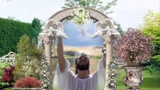 Tình Chúa Cao Vơi - Phan Đinh Tùng thumbnail
