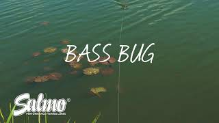 Salmo Lures In Action