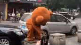 Gấu lầy troll thọc gậy   Tik Tok Trung Quốc