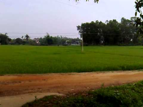 Nguyễn Nam Hà, Cây Đa  Huống Thượng  Đồng Hỷ Thái Nguyên