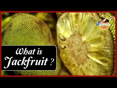 What is Jackfruit? | Matunga Market | Fresh and Local | Vicky Ratnani