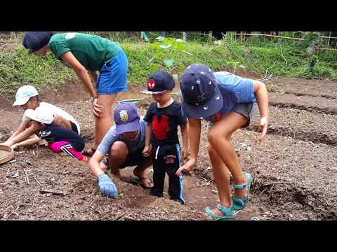 Organic Gardening at Greencamp Bali Indonesia, Family Camp
