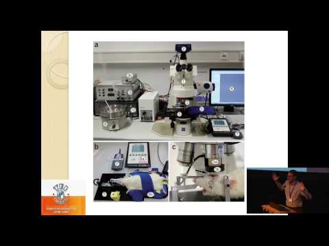Creation and development of an interactive Virtual Laboratory - Antonis Tsoukalis