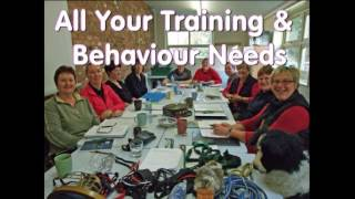 K9 Dog Behaviour Courses Intro