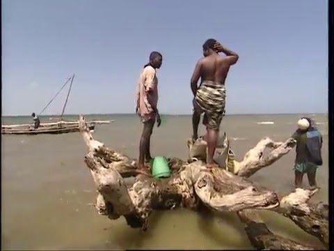 Fishing Adventures in Kenya Documentary