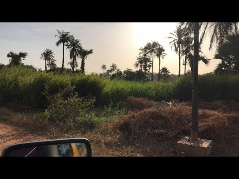 The Gambia, October 2017, The Movie (4K UHD)