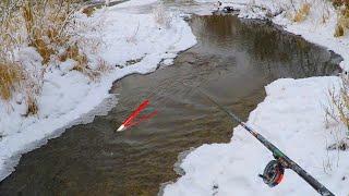 ЗАКИНУЛ ПОПЛАВОК В РУЧЕЙ...КАРАСЬ ПРЁТ УДОЧКУ?! Рыбалка зимой 2020