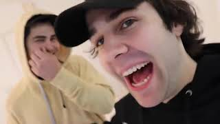 BEST MOMENTS OF TODD IN DAVID DOBRIKS VLOGS 2018
