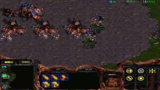starcraft brood war fastest ( 2 vs 3)