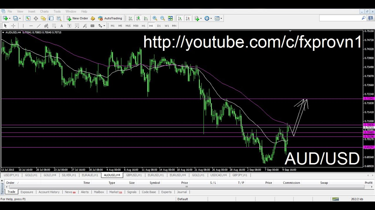 Forex trading forecast