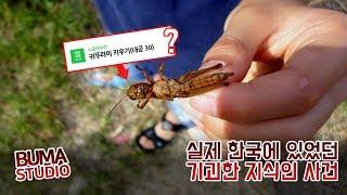 한국에 실제 있었던 기괴한 지식인 사건 #설명요정부마