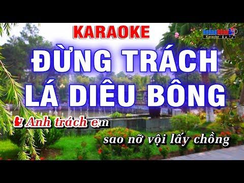 Đừng Trách Lá Diêu Bông -Son ca & TBG