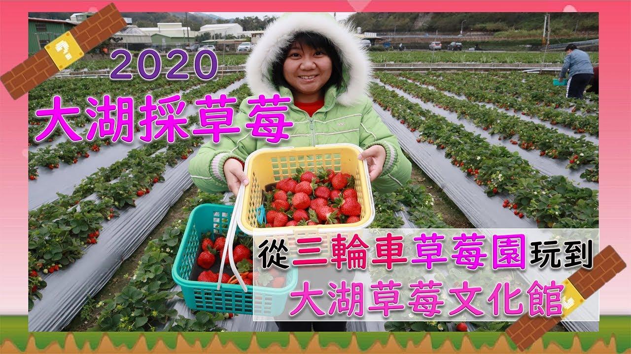 2020大湖採草莓Strawberry Festival|三輪車草莓園|大湖草莓文化館新品公開 SV玩樂誌Vlog#8 - YouTube