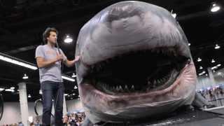 We Interviewed Sharkzilla AKA The Shark From Shark Week - Get Yo Chomp On