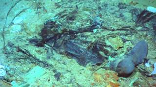 (1912-2015 TITANIC) Human remains at Titanic shipwreck site