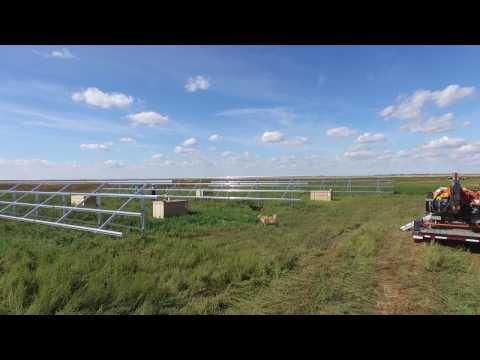 Grassy Lake, Alberta 120KW solar