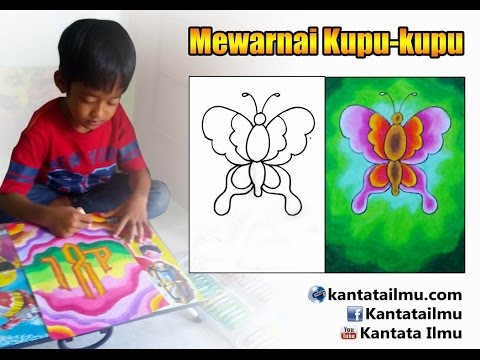 How To Coloring A Butterfly Cara Mewarnai Gambar Kupu Kupu