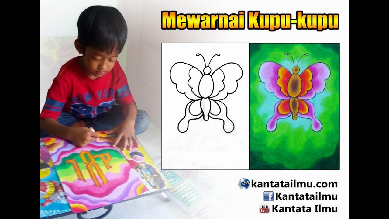How To Coloring A Butterfly Cara Mewarnai Gambar Kupu Kupu Youtube