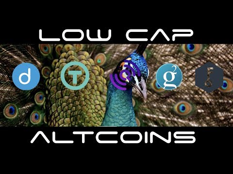 Undervalued Low Cap Altcoins Heading into February 2018
